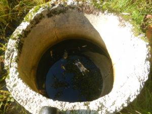 Kaaneta drenaažikaevu upuvad loomad, seetõttu peaks hoolitsema selle eest, et kaevud alati kaanetatud oleksid.