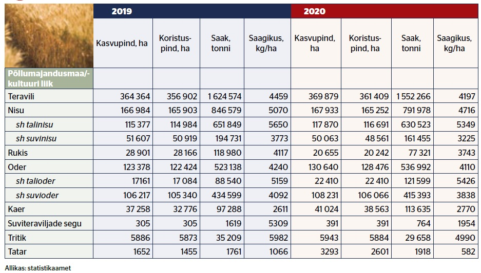 Tabel: Eestimaa põldudelt koristati tänavu veidi enam kui 1,55 miljonit tonni teravilja, näitavad statistikaameti esialgsed andmed. Mullusel rekordaastal koristati üle 1,62 tonni teravilja.  Keskmiseks saagikuseks saavutati sel aastal 4200 kg hektarilt, mida on vähem kui möödunud aastal. Väga hea saagikusega oli talioder, keskmise saagikusega 5426 kg hektarilt. Ka talinisu andis head saaki.  Tänavu suurenes õige pisut teravilja kasvupind, täpsemalt 1,5% võrra ehk 369 879 hektarini. Kõige enam kasvatatakse nisu ja otra, viimase kasvupind suurenes ligi 6%. Tatrakasvatus on meil küll marginaalne, kuid selle kasvupind suurenes 2020. aastal ligi kaks korda, 3293 hektarini. Rukki kasvupind vähenes.