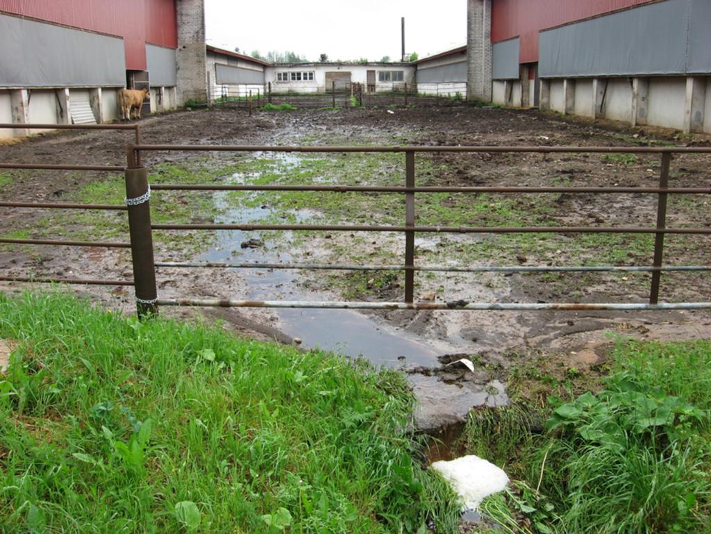 Fotol on loomapidamishoone, mille kõrval asuvas loomade välipidamisalas pole söötmis- ega jootmiskohta. Välipidamisalal on tekitatud keskkonnaoht. Foto: keskkonnaamet